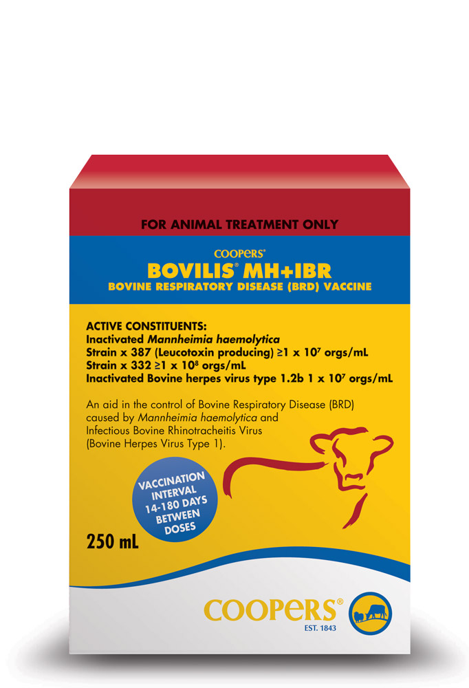 COOPERS Bovilis MH + IBR 250ml for vaccinations