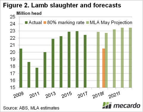 Mecardo Lamb Slaughter and Forecasts Chart