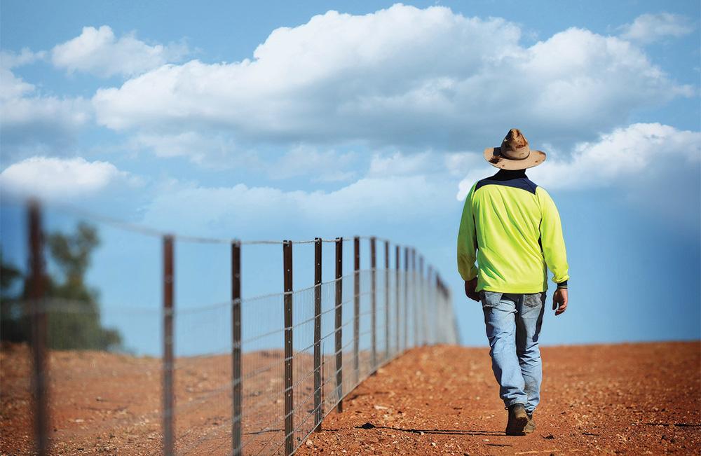Australian Farmer walking by a fence